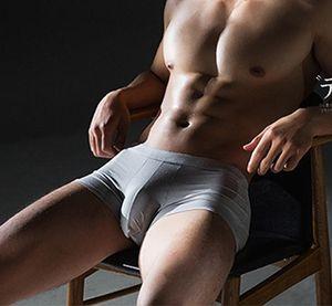 Hızlı kuru erkek modal boxer dikişsiz 3d penis kılıfı çorap torbası seksi katı iç çamaşırı