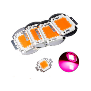 10W / 20W / 30W / 50W / 100W LED COB 380-840nm inundación luces de alta potencia LED crece la planta grano de la lámpara de luz de espectro completo EPILEDS envío libre de la viruta