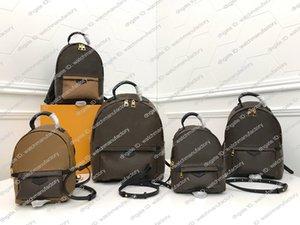 Luxus Designer Damen Palm Springs Rucksack Tasche Mini Lady Geldbeutel-Hand 41560 echte Leder-Umhängetasche