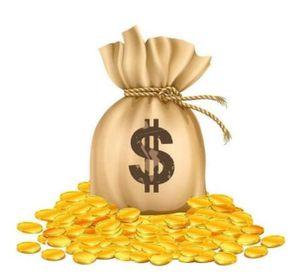 Supplemento, pagamento aggiuntivo per gli altri ordini o il costo dei campioni come da discusso
