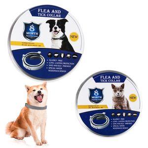 New Desparasitação Flea Prevenção Dog Anel gato Teddy Desparasitação Collar Pequeno Grande Dog Anti-Lice Pet Inseticida Neck Anel
