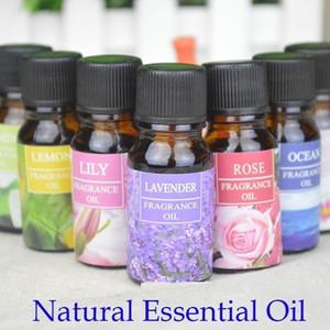 Aceite esencial de 10 ml de aceite esencial de aceite esencial de plantas naturales para difusores de aromaterapia Aceite esencial para humidificador de aire para interiores de automóviles