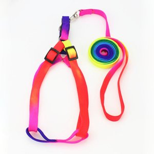 Rainbow Collor Pet Leashes com Collar / Arnês Juntos Pet Dog Cat Leashes Leva 10 jogos / lote Atacado