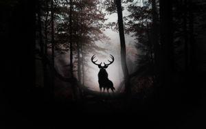 Evil Stag in a Gothic Horror Dark Forest Art Silk Print Poster 24x36inch(60x90cm) 089