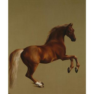 wall art Hand painted Whistlejacket George Stubbs canvas oil painting for office decor Gift