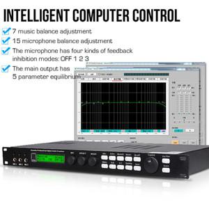 Freeshipping professionale effetto KTV preamplificatore processore audio digitale karaoke riverbero mixer insonorizzazione effetti casa