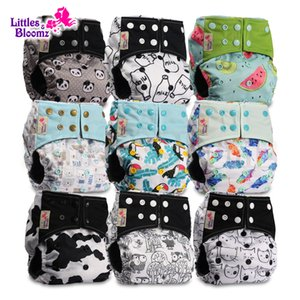 [Littles&Bloomz] 9pcs set BAMBOO CHARCOAL Washable Real Cloth Pocket Nappy, 9 nappies diapers and 0 insert in one set Free Ship CX200606