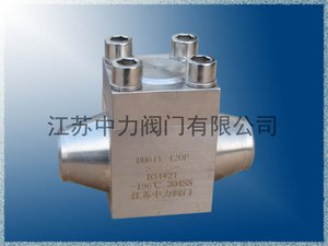 Dh61Y stainless steel low temperature swing check valve