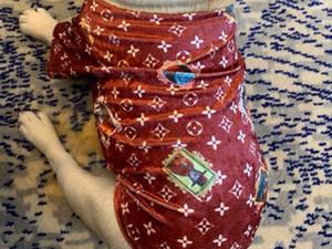 Роскошные милые весна и лето тонкий бархат толстая собака жилет одежда для домашних животных кошка и собака универсальный стрейч с коротким рукавом b33