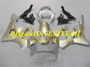 Kit de revestimento de molde de injeção para Honda CBR900RR 929 00 01 CBR 900RR CBR900 2000 2001 ABS Chamas douradas prata Conjunto de fairings + Presentes HZ38