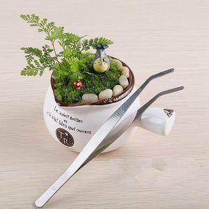 Recta curva de acero inoxidable pinzas musgo micro paisaje adornos herramientas especiales de jardinería diy zakka hadas jardín bonsai herramientas artesanales