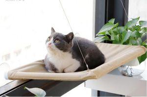 Spot carico tipo ventosa TV gatto amaca all'ingrosso cuscinetto grande ventosa forte gatto amaca