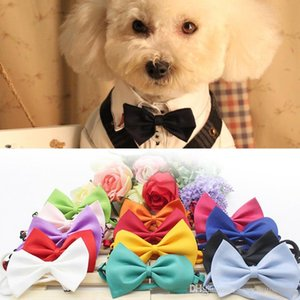 Dog Cat Neck Tie Dog Dress Up Bow Tie Lovely Pet Take Photo Supplies Pet Grooming Tie Headdress Flower Adjustable Ties BH1715 ZX
