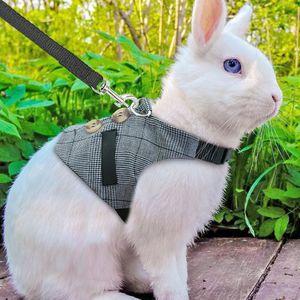 Kedi Tavşan Köpek Harness Yelek Küçük Hayvanlar Tavşan Aksesuar Pet Köpek Harness Tasmalar Kurşun Seti İçin Ferret Kobay Kedi