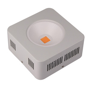 2pcs 200W 380nm-780nm 전체 스펙트럼 통합 COB LED 식물 성장 빛 실내 꽃 야채 텐트 램프 온실 수경