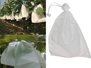 1000pcs / lot 포도 가방 안티 조류 모이스처 해충 방지 과일 보호 가방 텔라 모기 가방 포도 뉴 탱 포르타 Bustine