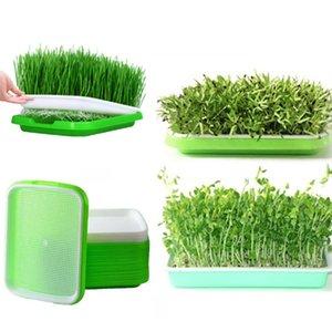 5sets 두 배 층씨 새싹 종묘장 쟁반 수경법 바구니 꽃 식물 발아 쟁반 상자 녹색+백색