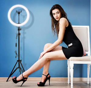 10 pollici Video Light Dimmable LED Selfie Ring Light USB Ring Lamp Photography Light with Phone Holder 2M Treppiede Stand per il trucco Youtube