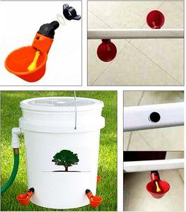 10 Pcs Frango Copo Drinking automática bebedor Frango alimentador plástico Poultry Água Potável Cups Fácil instalação com parafusos