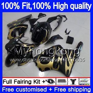 Inyección de OEM para Kawasaki ZX 12R ZX1200 1200 cc 2002 2003 2004 2005 2006 Las llamas doradas 224MY.28 ZX 12 R ZX12R ZX12R 02 03 04 05 06 carenado
