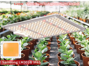 New Full Spectrum Samsung LM301B Led Grow Light 120W Dimmable Quantum Grow Light with UL Meanwell Driver