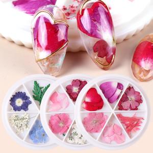 1 Rad Getrocknete Blumen Nail Art Deko 3D Natürliche Artificial-Blatt-Charme-Halsketten-Schmuck DIY Zubehör Tipps