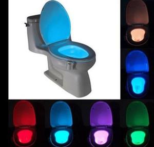 ضوء المراحيض الذكي الليلى أدى إلى إغلاق حركة جسم WC شغل مقعد متحرك مصباح آلي
