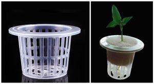 100 pcs-PACK En Gros maille Pot net panier avec Clonage col Insert en mousse pour pépinière Aéroponique légumes fleur semis Usine Élèvent Clone