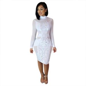 Signore delle donne Fashion Dress Long Sleeve Turtleneck Magro pizzo stampa floreale Slim Solid vita alta al ginocchio abito
