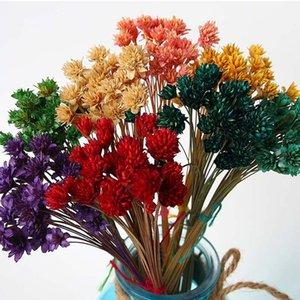 fiore immortalato colore materiale arrangement casa piccolo fiore secco di montagna materiali della scatola DIY regalo immortalato