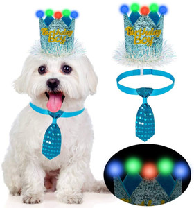 Crown and Adjustable Necktie Collar, Unique Pet Birthday Outfit and Accessories for Dogs