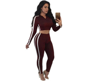 Womens Tracksuit Fashion Hooded Crop Top and Long Pants 2 Piece Set Female Cotton Casual Pants Suits Set Summer Outfits 2 Colors