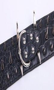 Red Dog clouté collier chaîne Slip Longe Fuchsia flash Collares Para Perros Noir clouté Collier de chaîne bdegarden YTUgl