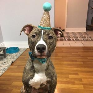 2pcs para mascotas partido del gato 1-Year-Old sombrero del cumpleaños del perro del casquillo de corona Bowknot Accesorio de cabeza Accesorio Azul