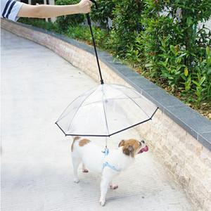 Ombrello per animali domestici regolabile creativo con impugnatura a C Corda per trazione per giorno di pioggia Ombrello per animali domestici Trasparente Forniture per camminata per giorno di pioggia
