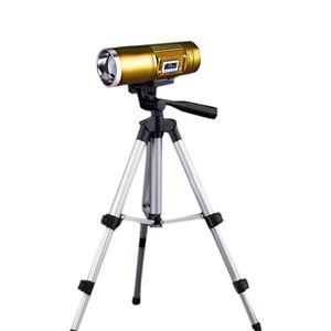 Brelong Led multi -Fonction double source lumineuse Zoom pêche lampe de poche Blu-Ray White Light Outdoor Fishing Gold / Purp