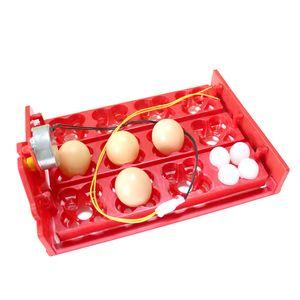 12 Eggs 48 Birds Eggs Incubator Turn Eggs Tray 220V   110V   12V Motor Chicken Bird Hatching Equipment DIY Incubator Accessories