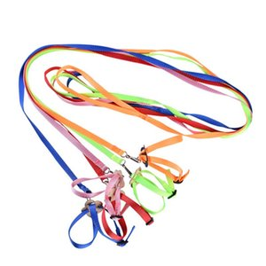 Portable New Parrot Bird Hamster Turtle Lizard Traction Rope Reins 8-shaped Pet Strap Leash