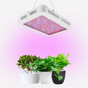 2019 LED Grow Light с висячими проводами, 1000W завод расти пробка лампа LED Grow Light клипа
