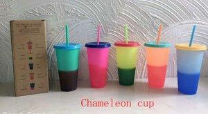 2009 Neue Farbwechsel Cup Straw Cup Hersteller Direktvertrieb Inspp Wärmeempfindliche Kunststoff Farbe ändern Cup LOGO W95995 Zum Anpassen