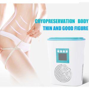 Taşınabilir Ev Mini Cryolipolysis Donma Yağ Vücut Güzellik Enstrüman Welight Kaybı Negatif Basınç zayıflama makinesi ücretsiz nakliye