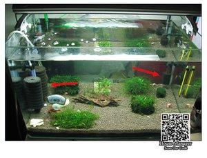 Защитная губка крышка аквариума фильтр, 2size Крышка фильтра Губка для насоса защиты небольших морских креветок остановки грязного материала