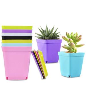 Tiesto Plaza plástico plantador de jardín de vivero Escritorio Decoración del color del caramelo con la bandeja de colores aleatorios yq01962