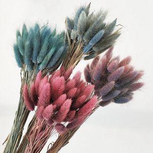 30pcs / lot conejo cola flor hierba Gradiente Lagurus ovatus secas naturales Flores Ramo de la boda Inicio decoraciones de Pascua