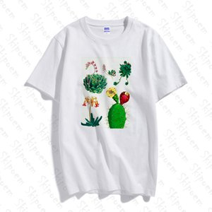 Delicato Succulente donne maglietta Harajuku Tumblr Kawaii di stile coreano a maniche corte in cotone Taglie Skipoem Streetwear Abbigliamento