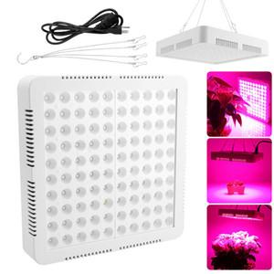 Wachsen LED-Licht 1500w 2000w 3000w Pflanzen Lampe für Zimmerpflanzen und Blumen Gewächshaus Gewächszelt