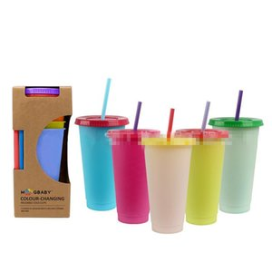 Hot selling Plastic Temperature Change Color Cups Cold Water Color Changing Coffee Cup Colorful Straws Mug 5 pcs set T9I00373