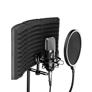 Condensador cardióide microfone de estúdio de grande diafragma microfones estéreo de endereçamento lateral mic desempenho Stage professionnel abranger não INCLOUDE