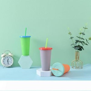 24OZ Temperature Change Color Cups Colorful Cold Water Color Changing Coffee Cup Mug Water Bottles With Straws Set EEA1659