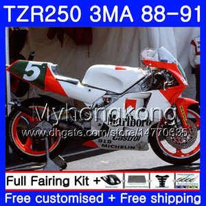 Kit de fábrica plateado Para YAMAHA TZR250RR TZR-250 TZR 250 88 89 90 91 Cuerpo 244HM.47 TZR250 RS RR YPVS 3MA TZR250 1988 1989 1990 1991 Carenado